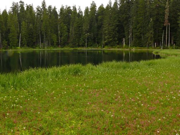 Parish Lake 060509038sm
