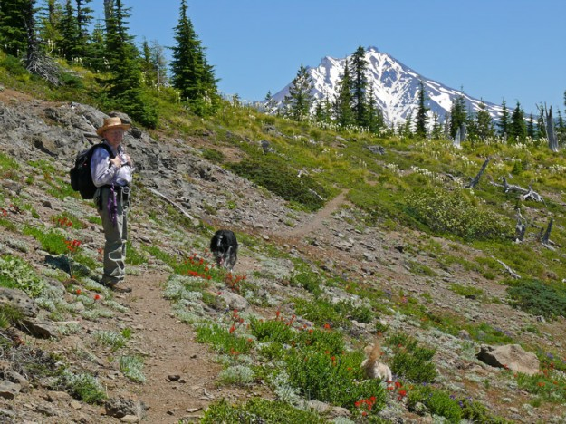 Robin and her dog Austin with Mt. Jefferson looming in the distance. Paco has found something of interest among the Castilleja hispida.