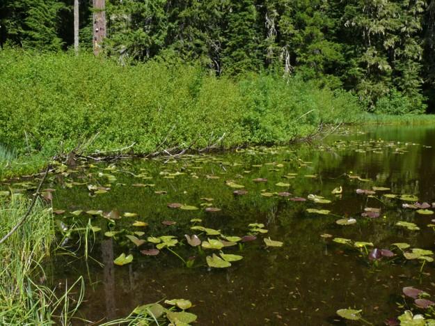 South Secret Lake