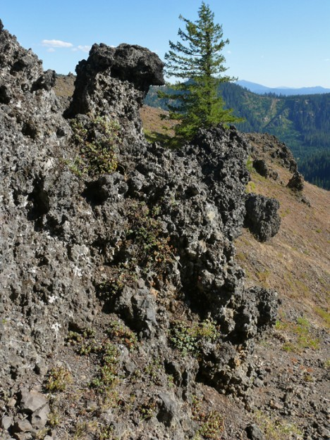 The wonderful craggy rocks on top of the bluff north of Loletta Lakes (this place deserves a name!)