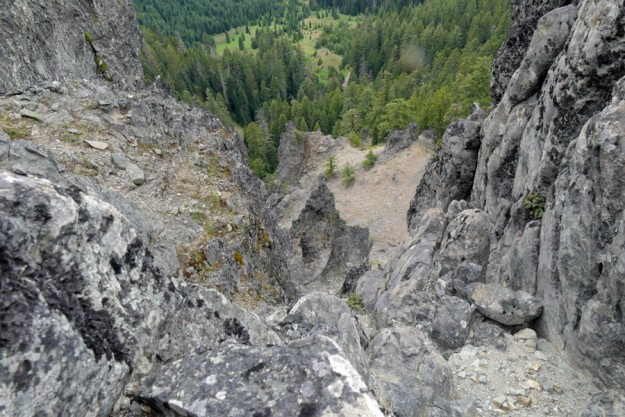 The west, cliff side of Potter Mountain drops over 500'. Both cliff penstemon (Penstemon rupicola) and Merriam's alumroot (Heuchera merriamii) inhabit the many cracks in the rock.