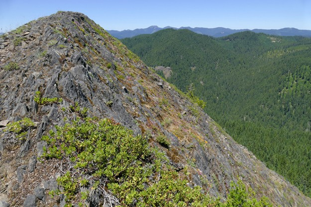 Looking past the steep north side of the rock, you can see Bohemia Mountain and Fairview Peak in the distance.