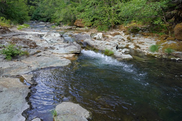 The water was quite low in Jackson Creek, making not to cold, just right for a swim in one of the many pools.