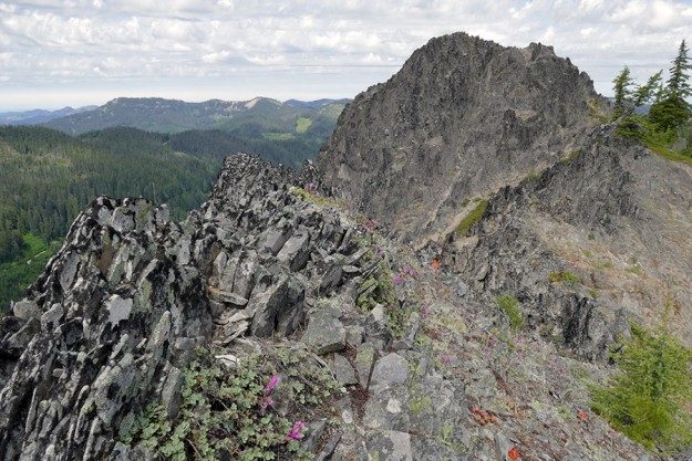 A few miles to the west is Balm Mountain, the long ridge with with bald spots on it. The rocks on Potter are completely different, even though the two mountains are only 5 miles apart.