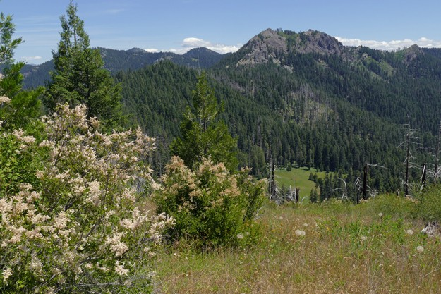 Highrock Mountain and Grasshopper Meadow