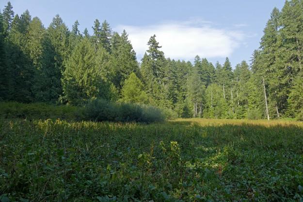 Prairie Camp