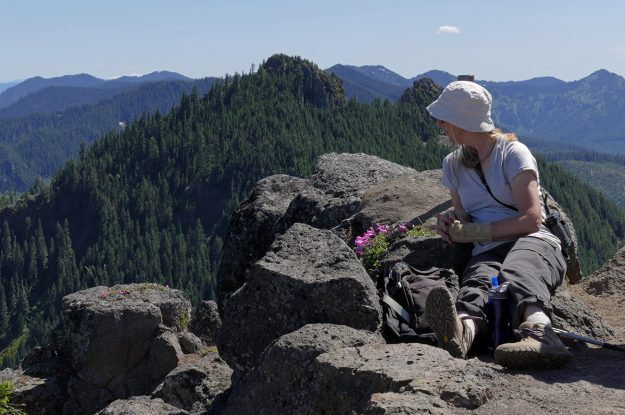 Nancy found a snug spot on the summit from which to admire the view. Behind her, looking south, we could see a few remaining spots of snow on Cone Peak, Browder Ridge, and other nearby spots. Immediately to the south is South Pyramid.